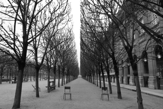 Winter in the jardin du Palais-Royal / Photo by Meagan Kirkpatrick